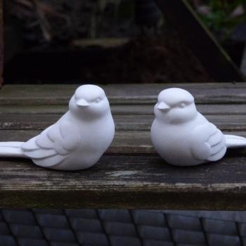 vogeltjes (2)