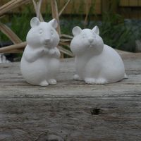 hamster (2#)