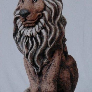 leeuw groot zittend