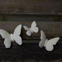 vlinders klein (3#)
