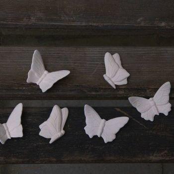 vlinders klein (6)