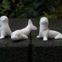 zeeleeuwtjes (3#)