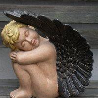 engel groot slapend vleugels boven L