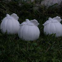 pompoentjes klein (3)