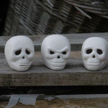 schedel klein (3)