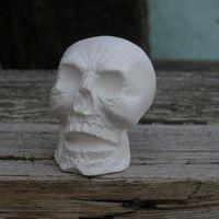 schedel klein (II)