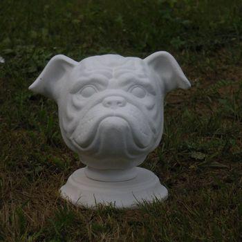 hond buldog buste