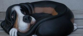 hond basset schaal