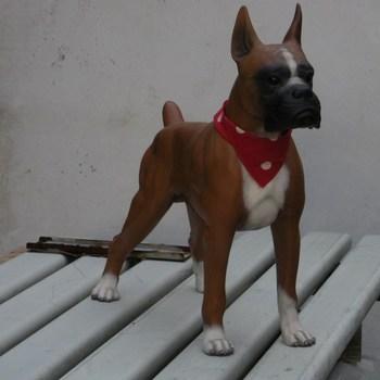 hond boxer groot staand