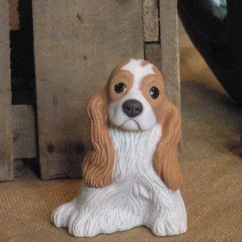 hond cocker spaniel klein