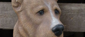 hond duitse dog muur
