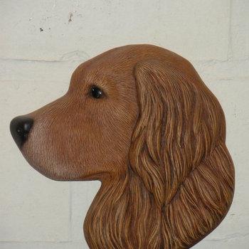 hond golden retriever muur