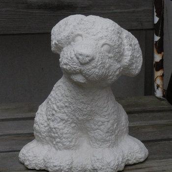 hond knubby retriever