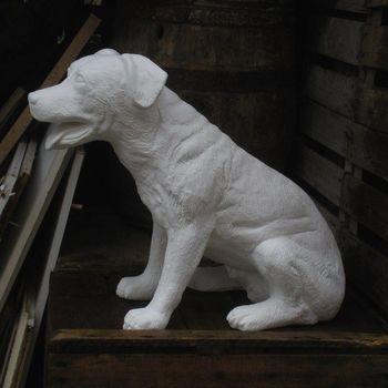 hond rotweiler groot zit