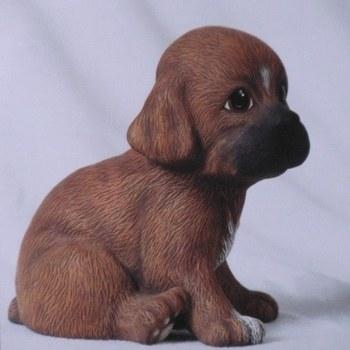puppie groot zittend