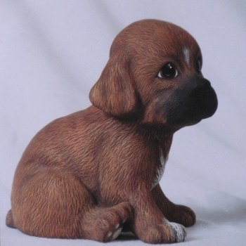 hond puppie groot zittend