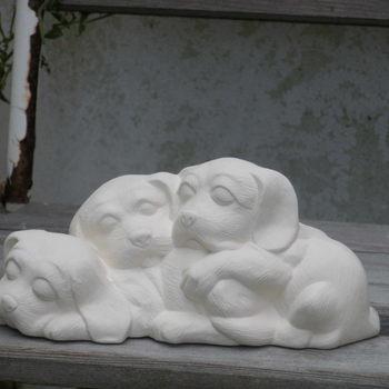 hond puppies op een rij