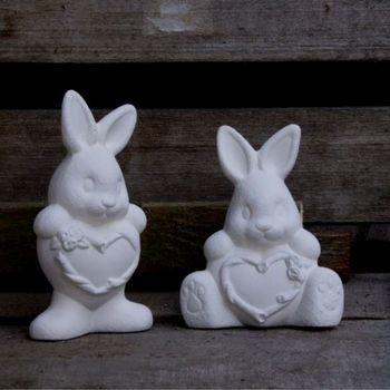 konijn hart (2)