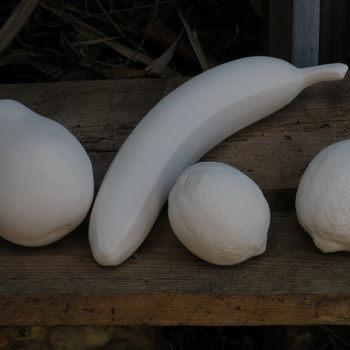 fruit (banaan,peer,citroen,limoen)