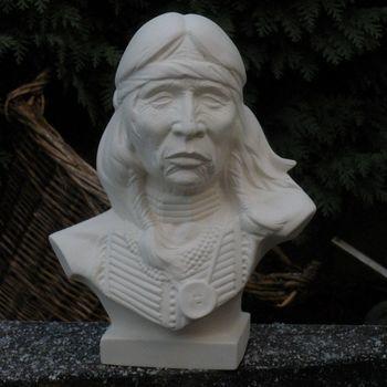 indiaan borstbeeld man