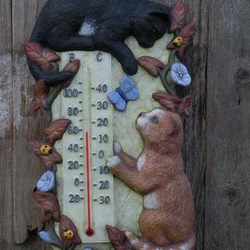thermometer katten