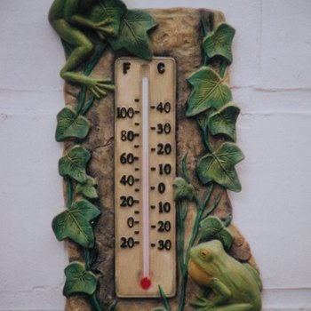 thermometer kikkers