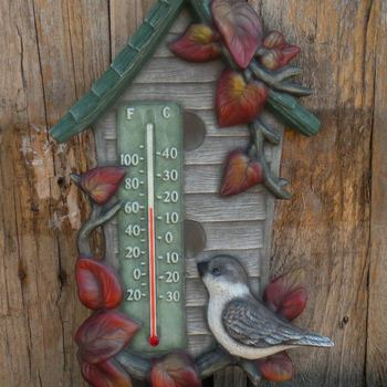 thermometer vogel