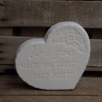 steen hart