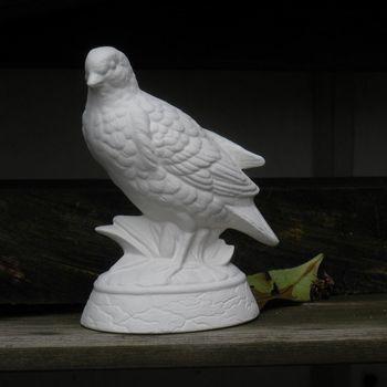 vogel kwartel