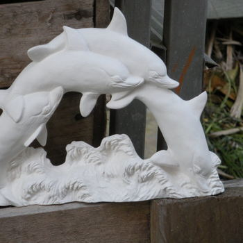 dolfijnring