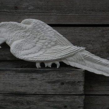 wierookhouder papegaai
