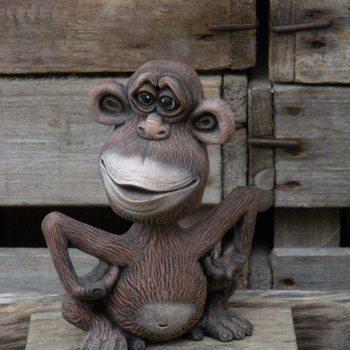 wiebel aap